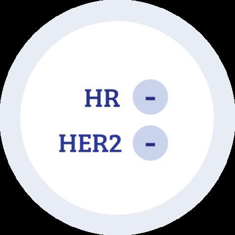 Icon zu Hormonrezeptor negativ HER2 negativ