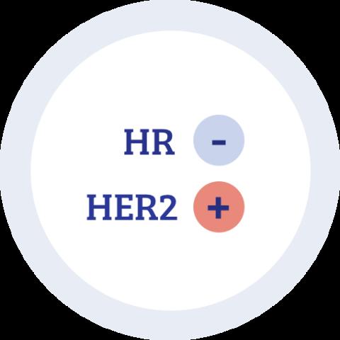 Icon zu Hormonrezeptor negativ HER2 positiv