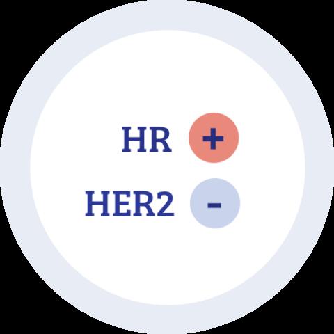 Icon zu Hormonrezeptor positiv HER2 negativ